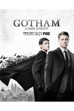 Gotham Season 4 Disc 1