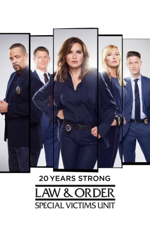 Law and Order SVU Season 20 Disc 3