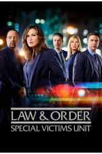 Law and Order SVU Season 19 Disc 1