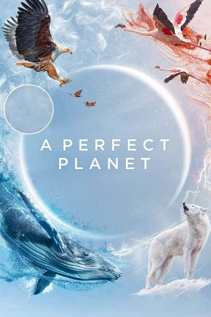 A Perfect Planet The Complete 1st Series