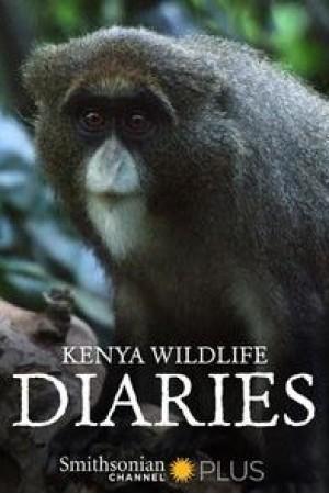 Kenya Wildlife Diaries The 1st Season