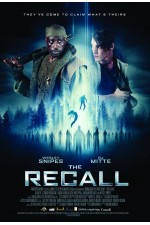 Recall (2017)  The