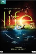 Life (2009) The Complete 10 Part Mini-Series (3 disc set)