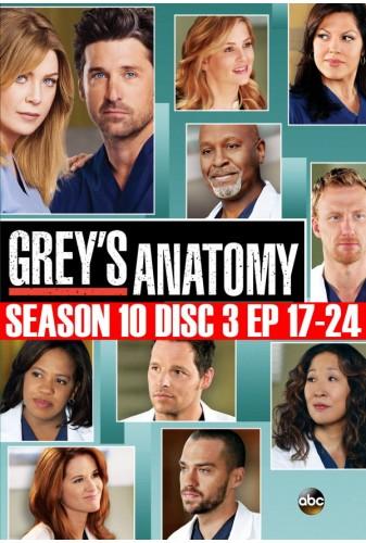 Grey\'s Anatomy - Season 10 Disc 3 (17-24)
