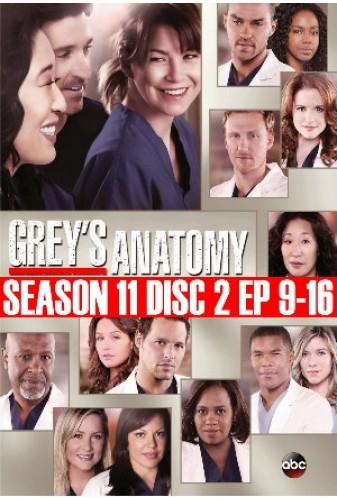 Greys Anatomy Season 11 Disc 2 9 16